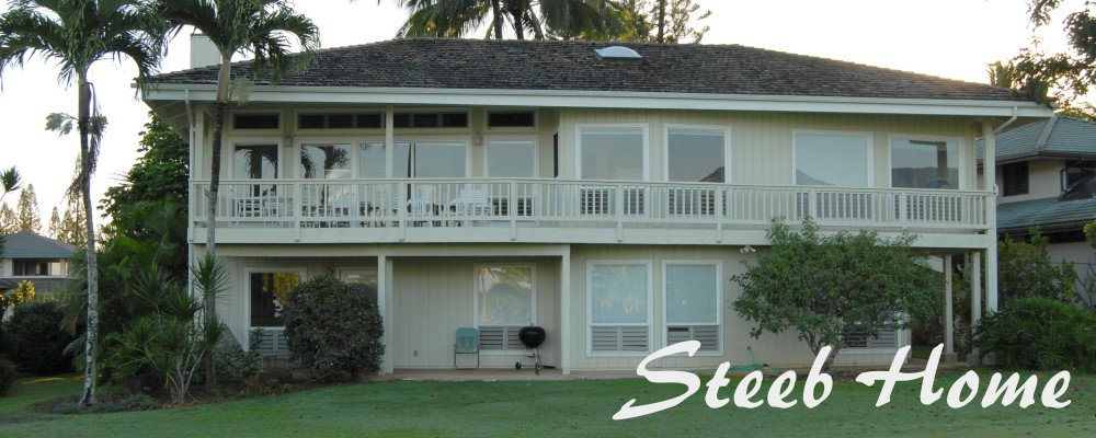 Steeb Home
